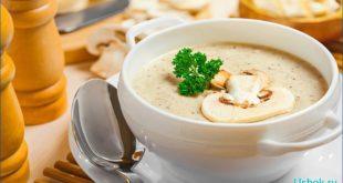 Нежный крем-суп из грибов