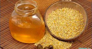 Пчелиный прополис и его лечебные свойства