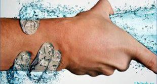 Какова роль воды в организме человека