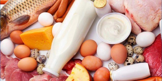 Значение белков для организма